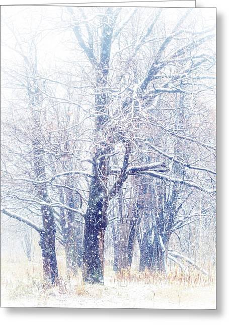 First Snow. Dreamy Wonderland Greeting Card by Jenny Rainbow