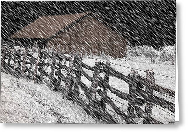 Snowy Night Greeting Cards - First Snow Greeting Card by Novastock