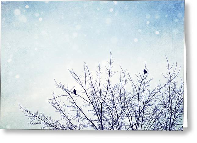 First Snowfall Greeting Card by Carolyn Cochrane