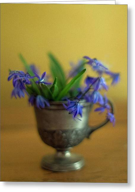 Pewter Jug Greeting Cards - First Spring Flowers Greeting Card by Ness Welham