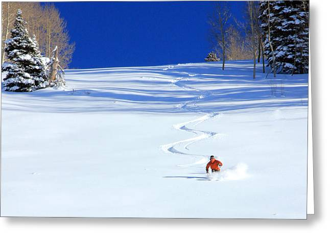 First Tracks Greeting Card by Johnny Adolphson