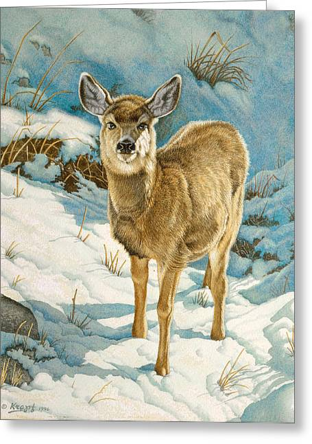 Fawn Greeting Cards - First Winter  - Fawn Greeting Card by Paul Krapf