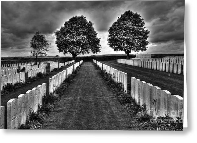 Senseless Greeting Cards - First World War Graves Greeting Card by Colin Woods