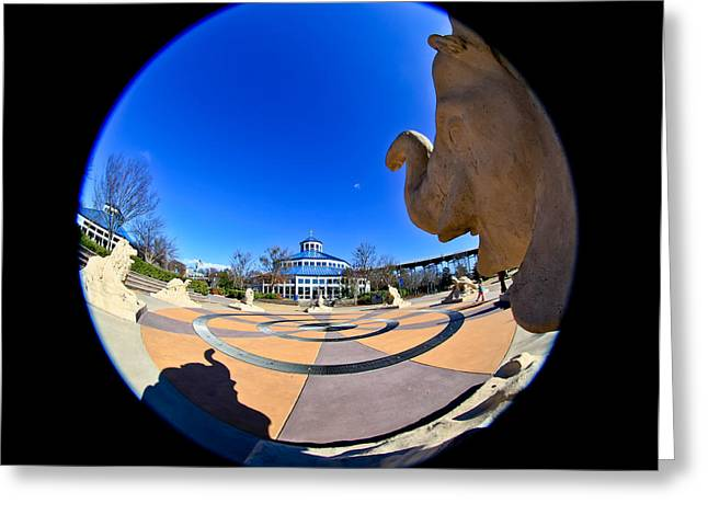 Fish Eye View of Coolidge Park Greeting Card by Tom and Pat Cory
