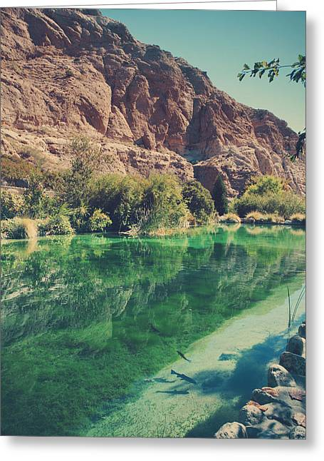 Desert Photographs Greeting Cards - Fish Gotta Swim Greeting Card by Laurie Search