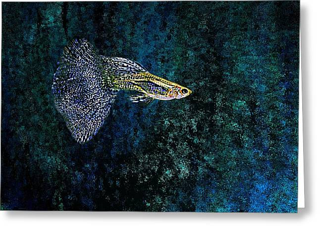 Digital Greeting Cards - Fish in Blue pointillism Greeting Card by Mario  Perez