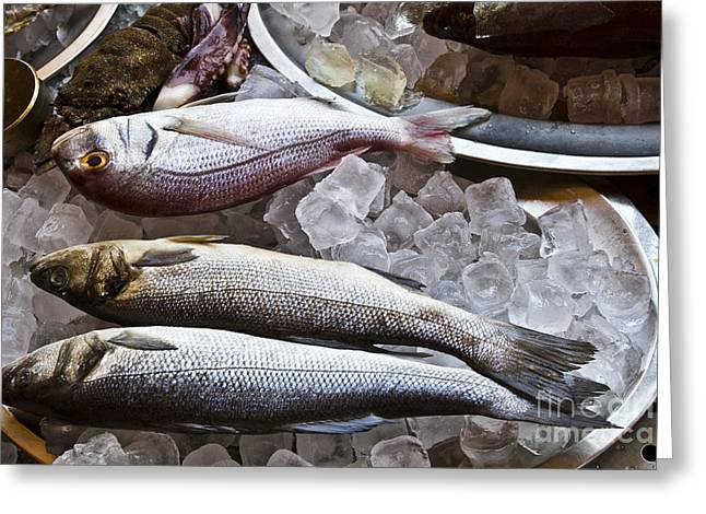 Throwing Food Greeting Cards - Fish Greeting Card by IB Photo