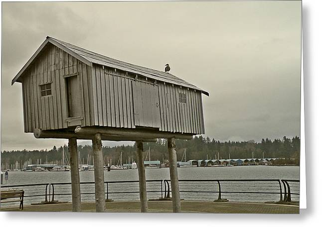 Metal Fish Art Photography Greeting Cards - Fish Shack Greeting Card by Brian Chase