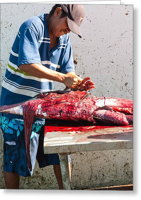 Swordfish Greeting Cards - Fisherman in Cabo San Lucas Marina Baja California Greeting Card by Robert Ford