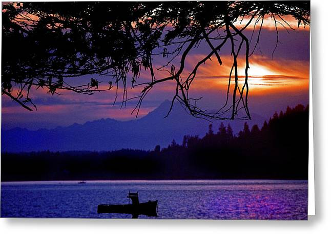 Gloaming Greeting Cards - Fishermans Delight Greeting Card by Mike Flynn