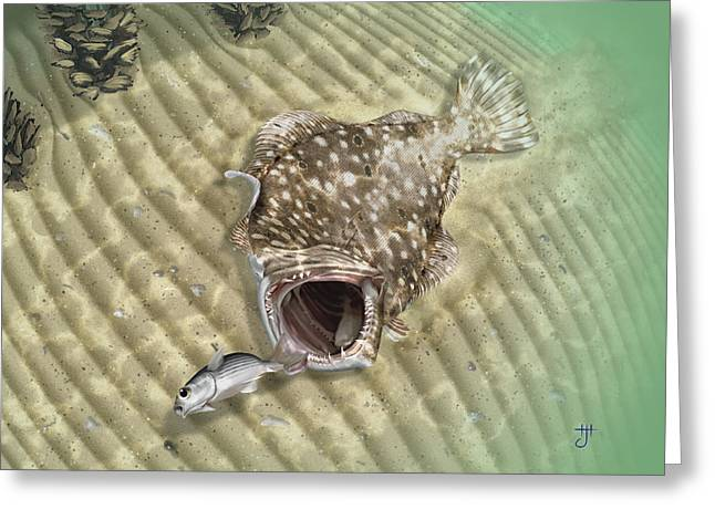 Mullet Greeting Cards - Fishermans Post Flounder Greeting Card by Hayden Hammond