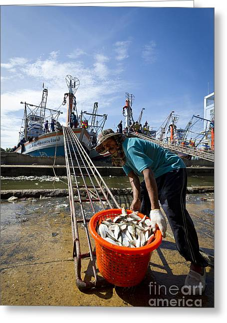 Asian Market Greeting Cards - Fishermens Pier, Mahachai Greeting Card by John Shaw