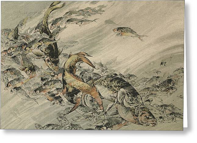 Fishes Greeting Card by Jules-Auguste Habert-Dys
