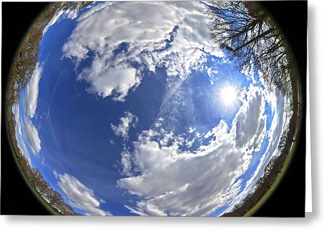Fisheye Park Greeting Card by Jane Rix