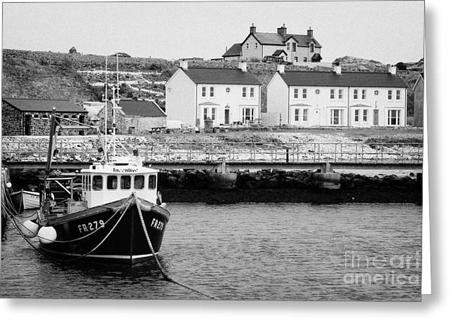 fishing boat tied up in rathlin harbour with new houses in background Rathlin Island northern irelan Greeting Card by Joe Fox