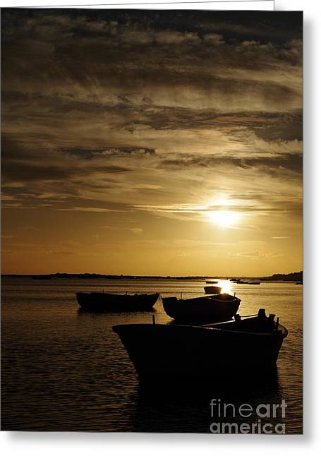 Reflections In River Greeting Cards - Fishing Boats in Cacela Velha Greeting Card by Angelo DeVal