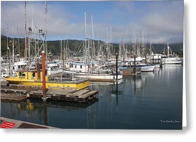 Boats In Harbor Digital Art Greeting Cards - Fishing Boats In Garabaldi Harbor Greeting Card by Tom Janca