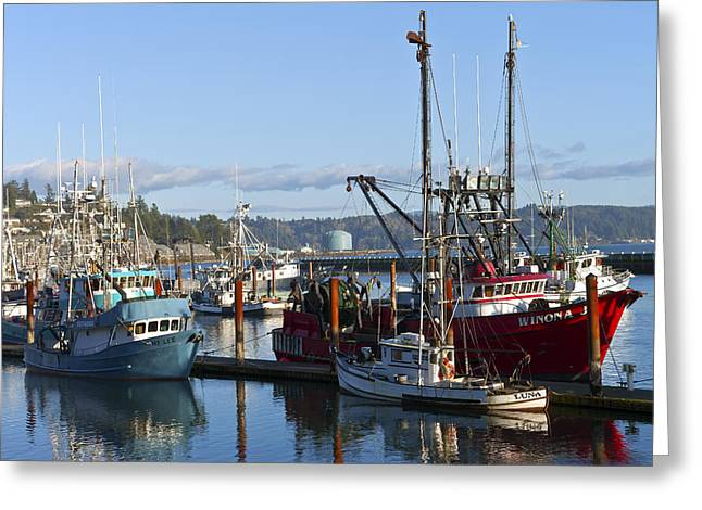 Netting Greeting Cards - Fishing boats in Newport Oregon. Greeting Card by Gino Rigucci