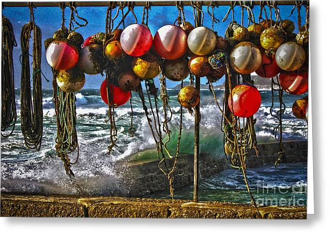 Terri Waters Greeting Cards - Fishing Buoys Greeting Card by Terri  Waters