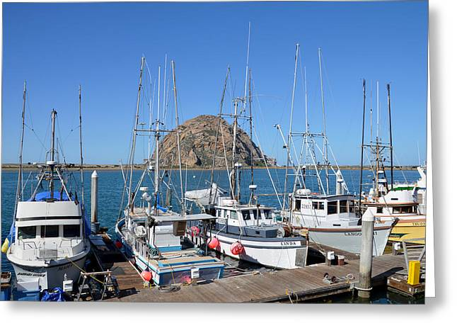 Boats In Harbor Greeting Cards - Fishing Fleet In Front Of Morro Rock Greeting Card by Barbara Snyder