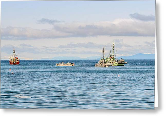 Gathering Greeting Cards - Fishing Fleets  Greeting Card by Roxy Hurtubise