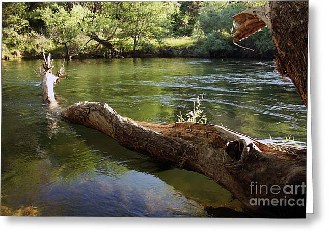 Fishing Lake Solano Greeting Card by Juan Romagosa
