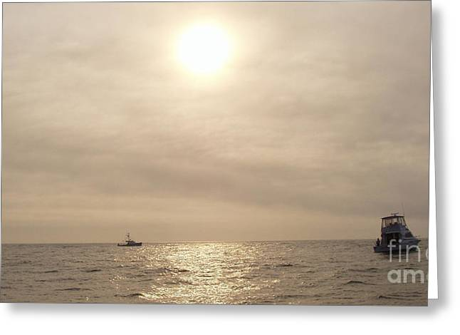 Ocean Art Photos Greeting Cards - Fishing Montauk Greeting Card by John Telfer