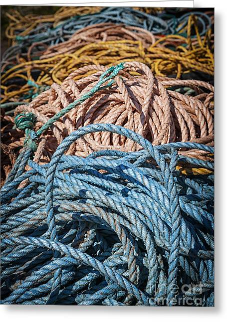 Ropes Greeting Cards - Fishing ropes Greeting Card by Elena Elisseeva