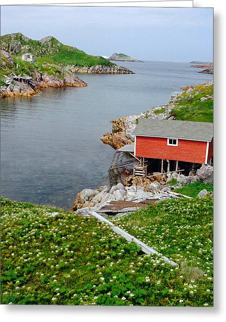 Fishing Stage Little Fogo Island Newfoundland Greeting Card by Lisa Phillips