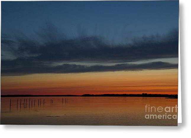 Campobello Island Greeting Cards - Fishing Weirs  Greeting Card by Alana Ranney