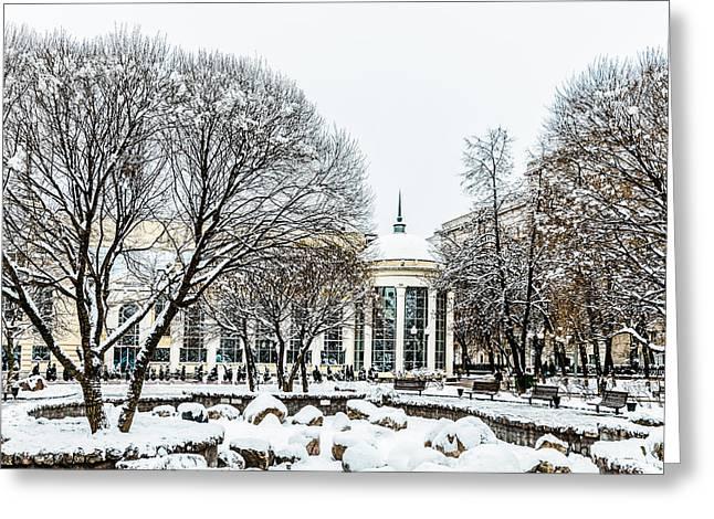 First December Snow Greeting Card by Alexander Senin