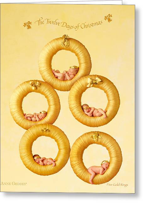 12 Days Of Christmas Greeting Cards - Five Gold Rings Greeting Card by Anne Geddes
