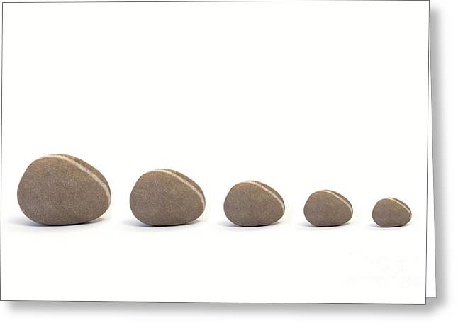 Neutral Colours Greeting Cards - Five Pebbles against White Background Greeting Card by Natalie Kinnear