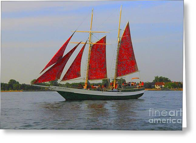 Struckle Greeting Cards - Five Red Sails Greeting Card by Kathleen Struckle
