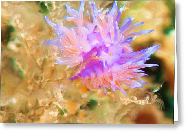 Undersea Photography Greeting Cards - Flabellina Nudibranch Greeting Card by Roy Pedersen