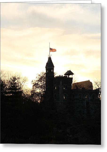Half Staff Greeting Cards - Flag at half-staff in Central Park New York Greeting Card by Vance Bell