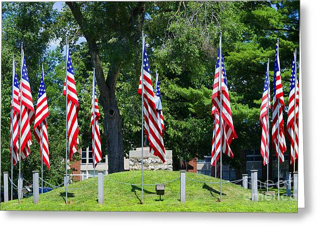 Flag - Illinois Veterans Home - Luther Fine Art Greeting Card by Luther  Fine Art
