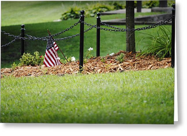 American Flag Pyrography Greeting Cards - Flag in the Park Greeting Card by Tyler Finney