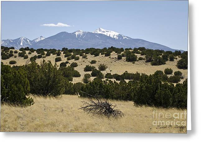 Chromatic Greeting Cards - Flagstaff Landscape III Greeting Card by Dave Gordon