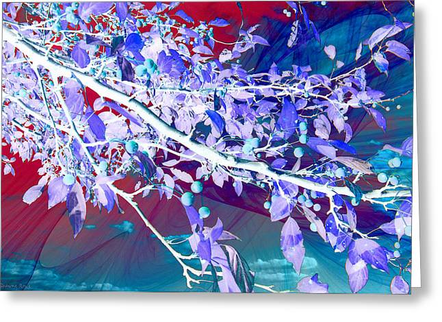 Inverted Color Greeting Cards - Flamboyant Nature Greeting Card by Shawna  Rowe