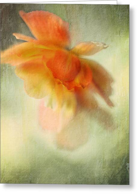 Decorativ Photographs Greeting Cards - Flame Greeting Card by Annie  Snel