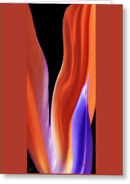 Abstractions Greeting Cards - Flame - Bird Of Paradise   Greeting Card by Ben and Raisa Gertsberg