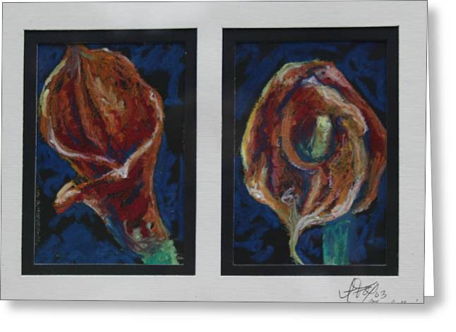 Calla Lily Drawings Greeting Cards - Flame Callas Greeting Card by Allison Fox