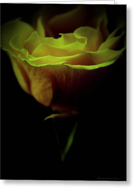 Flame Greeting Card by  The Art Of Marilyn Ridoutt-Greene