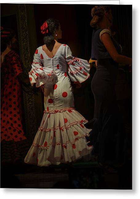 Flamenco Dancer #14 Greeting Card by Mary Machare