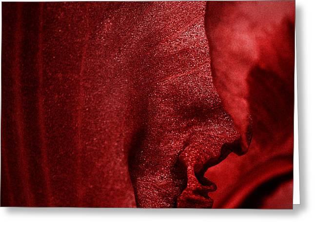 Ruffled Skirt Greeting Cards - Flamenco Greeting Card by Karen Slagle
