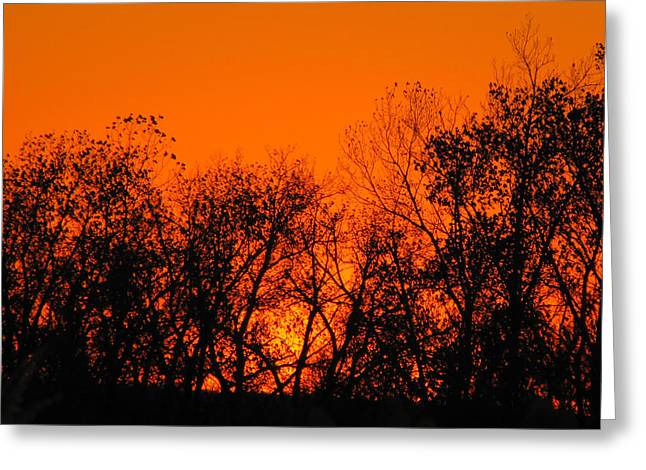 Tony Grider Greeting Cards - Flaming Sunset II Greeting Card by Tony Grider