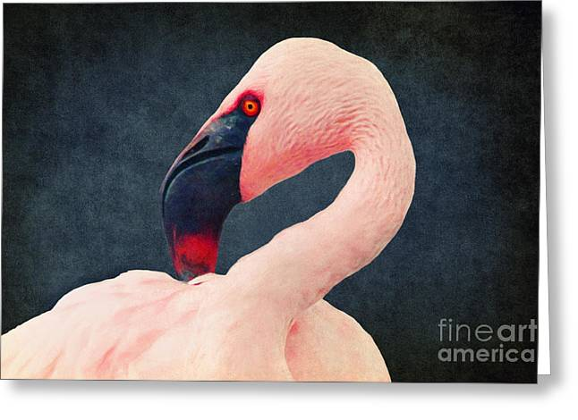 Glowing Mixed Media Greeting Cards - Flamingo Greeting Card by Angela Doelling AD DESIGN Photo and PhotoArt