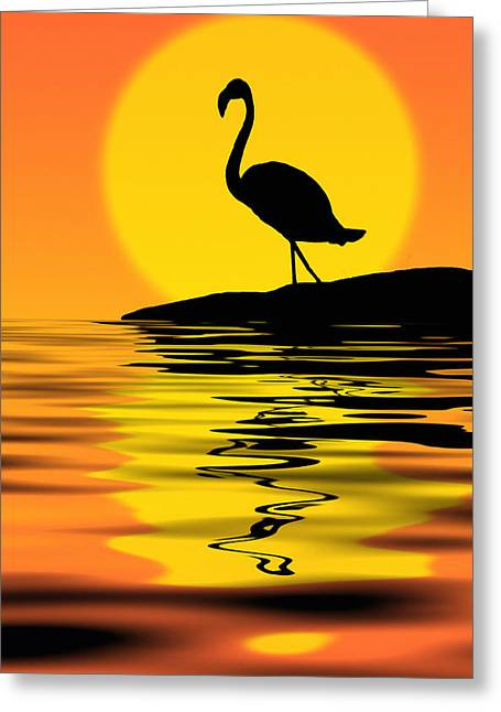 Amazing Sunset Mixed Media Greeting Cards - Flamingo at sunset Greeting Card by Nataly Rubeo
