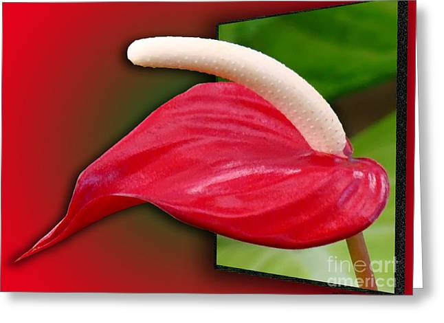 Creative Manipulation Digital Greeting Cards - Flamingo Flower Passion Greeting Card by Sue Melvin